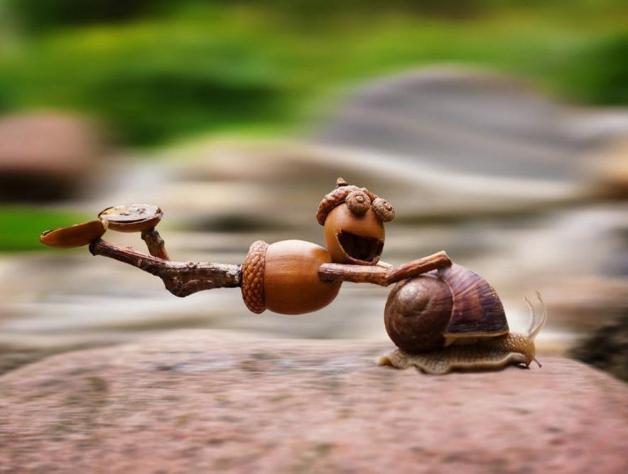 Acorn elf riding on the snail postcard _ Zazzle_com.jpg