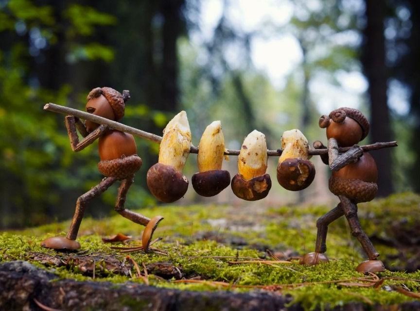 Acorn elves with mushrooms postcard _ Zazzle_com.jpg